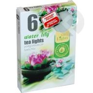 Podgrzewacze zapachowe Water Lily