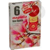 Podgrzewacze zapachowe Magnolia