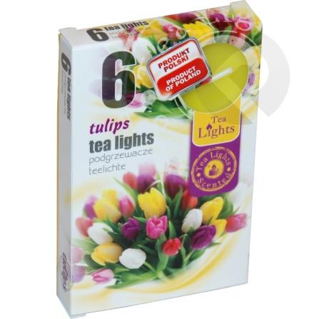 Podgrzewacze zapachowe Tulips