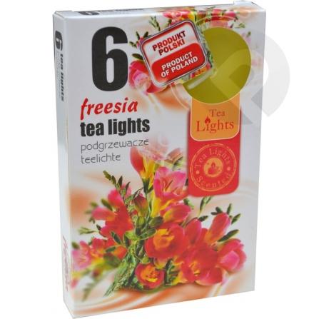 Podgrzewacze zapachowe Freesia