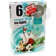 Podgrzewacze zapachowe Cotton Fresh