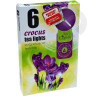 Podgrzewacze zapachowe Crocus