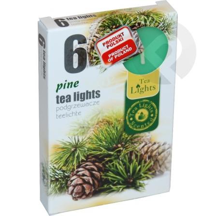 Podgrzewacze zapachowe Pine
