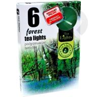 Podgrzewacze zapachowe Forest