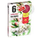 Podgrzewacze zapachowe Tuberose