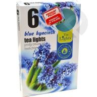 Podgrzewacze zapachowe Blue Hyacinth