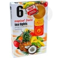 Podgrzewacze zapachowe Tropical Fruits